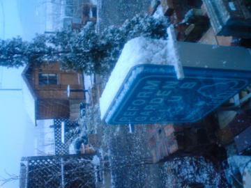春の淡雪?本格的雪