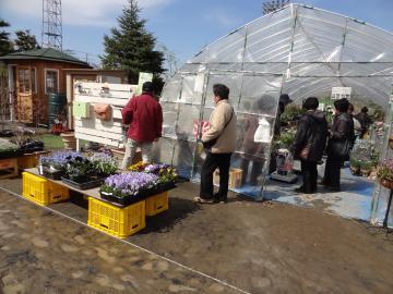 第43回八戸市緑化まつりが開催中