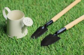 芝生の管理