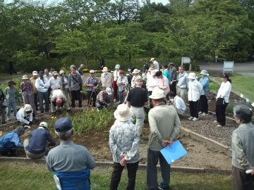八戸公園で園芸教室